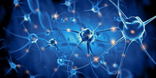 Operasi Saraf Peroneal Dapat Membantu Meredakan Nyeri Linu Panggul dapat menyebabkan disfungsi saraf peroneal